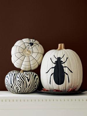 blackandwhite pumpkins